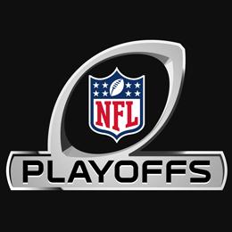 2015 NFL Division Championships